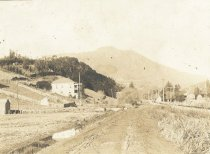 Image of Miller Avenue looking toward Mt. Tamalpais, circa 1903                                                                                                                                                                                                     - Print, Photographic