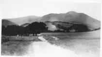 Image of East Blithedale Avenue, circa 1885                                                                                                                                                                                                                         - Print, Photographic