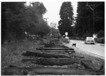 Image of Removing train tracks on Miller Ave. circa 1955                                                                                                                                                                                                         - Print, Photographic