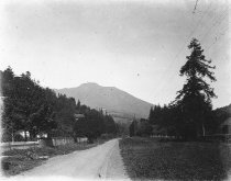 Image of Miller Avenue near Park Avenue, circa 1899                                                                                                                                                                                                                - Print, Photographic