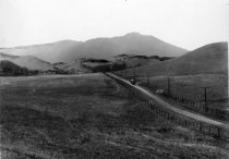 Image of Looking up Blithedale Road  from Alto, 1896                                                                                                                                                                                                                    - Print, Photographic