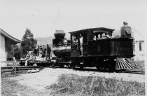 Image of North Pacific Coast Railroad at Millwood station circa 1890                                                                                                                                                                                             - Print, Photographic