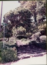 Image of Intersection of Lovell and Cornelia Avenues, circa 1984                                                                                                                                                                                                        - Print, Photographic