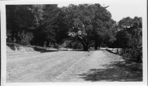 Image of View downhill from 205 W. Blithedale Ave, circa 1912                                                                                                                                                                                                    - Print, Photographic