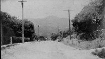 Image of Throckmorton Avenue near Eugene Street, circa 1900                                                                                                                                                                                                      - Print, Photographic
