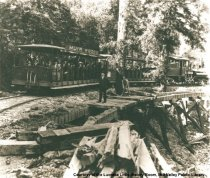 Image of Muir Woods train, circa 1911                                                                                                                                                                                                                                   - Print, Photographic