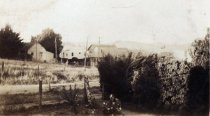 Image of Unidentified houses, date unknown                                                                                                                                                                                                                          - Print, Photographic