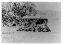 Image of Blithedale Hotel cottage, date unknown Fire on Mt. Tamalpais in 1929. Fire on Mt. Tamalpais, 1929.  - Print, Photographic