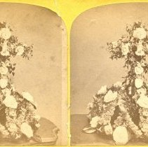 Image of 2015.47.5 - Stereoview