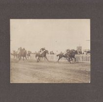 Image of Walter Robbins Collection - A Horse Race