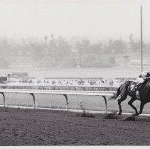 Image of An Act racing at Santa Catalina