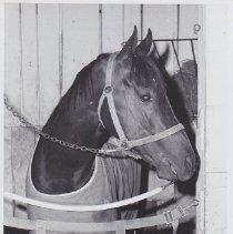 Image of 1986.069.0141 - Print, Photographic
