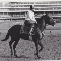 Image of Golden Act walking on track with excercse rider up