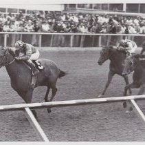 Image of Golden Act winning Louisanna Derby