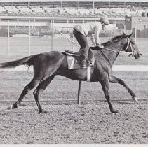 Image of Inca Roca running on the track