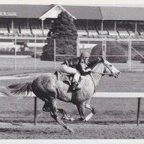 Image of Lot o' Gold, 1986.69.328B