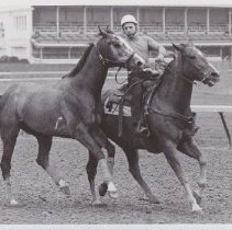 Image of Papelote on track with another horse