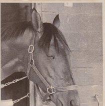 Image of Solo Mio, 1986.69.472A