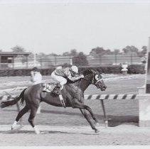 Image of 1986.069.0481 - Print, Photographic