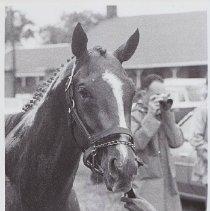 Image of 1986.069.0494 - Print, Photographic