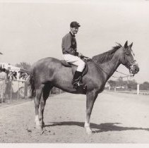Image of Ray, a lead horse, Ray Thompson up