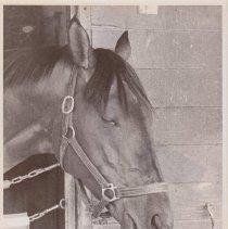 Image of Solo Mio, 1986.69.472B
