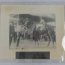 Image of Bronzewing wins the 1914 Kentucky Oaks