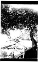 Image of 1975.06.0099.03.IIC.07.08 - Print, Photographic