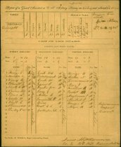 Image of List of guards assigned from 19th Regiment Virginia Militia to guard a CSA military prison and hospital, 22 July 1864. Lieut. James A. Scott, Co E commanding.  - 2001.0703