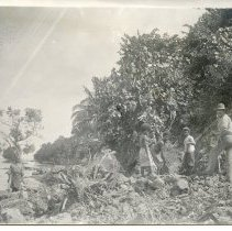 "Image of Geil - photograph of indigenous people on the coast of Papua New Guinea. Back of photograph reads ""New Guinea"""