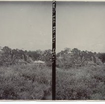 """Image of Geil - photograph, view of Kwato Island, Papua New Guinea. Caption on photo reads 'Kwato, B.N.G. Dec 1901 Geil"""""""