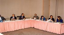 Image of AAPA5.089 - Board of Directors, 1996