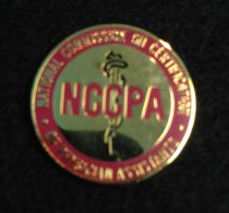 Image of NCCPA Pin