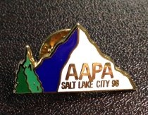 Image of Salt Lake Pin