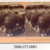 Image of 2006.072.0001 - Stereoview