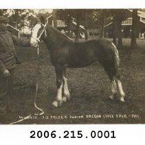 Image of 2006.215.0001 - Postcard