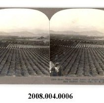Image of 2008.004.0006 - Stereoview