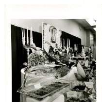 Image of 1998.045.0121 - Photograph