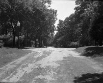 Image of M0051 - Negative, Film