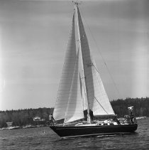 Image of LB2005.24.8271 - Boutilier Collection