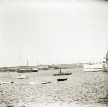 Image of LB2000.52.511 - Coombs Collection