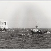Image of LB2012.15.1644 - National Fisherman Collection