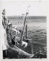 Image of LB2012.15.10007 - National Fisherman Collection