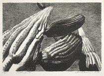 Image of Brown, Arthur William -