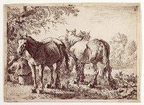 Image of Laer, Pieter van -