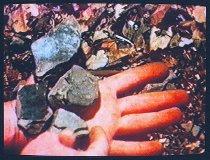 Image of Oppenheim, Dennis -