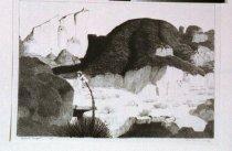 Image of Buff, Conrad, II -