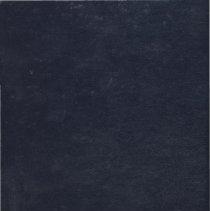 Image of Lake Shore Athletic Association Scrapbook, 1973 - 1974