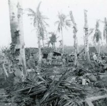Image of World War II Photograph - This is a photograph taken in the Pacific Theater during the Second World War. It features a camp in a palm grove after a bombing, and may have been snapped in the Philippine Islands.