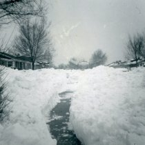 Image of 1967 Snowstorm - This is a photograph of the 1967 Snowstorm which blanketed the Chicago area, including Oak Lawn, with several feet of snow.  It features Sproat Avenue near 88th Street.